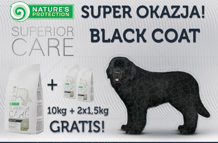 black-kwadrat-1.png